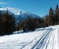 Spišská Bukovina